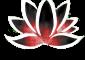 lotus-fond-noir-transp-sans-ecriture